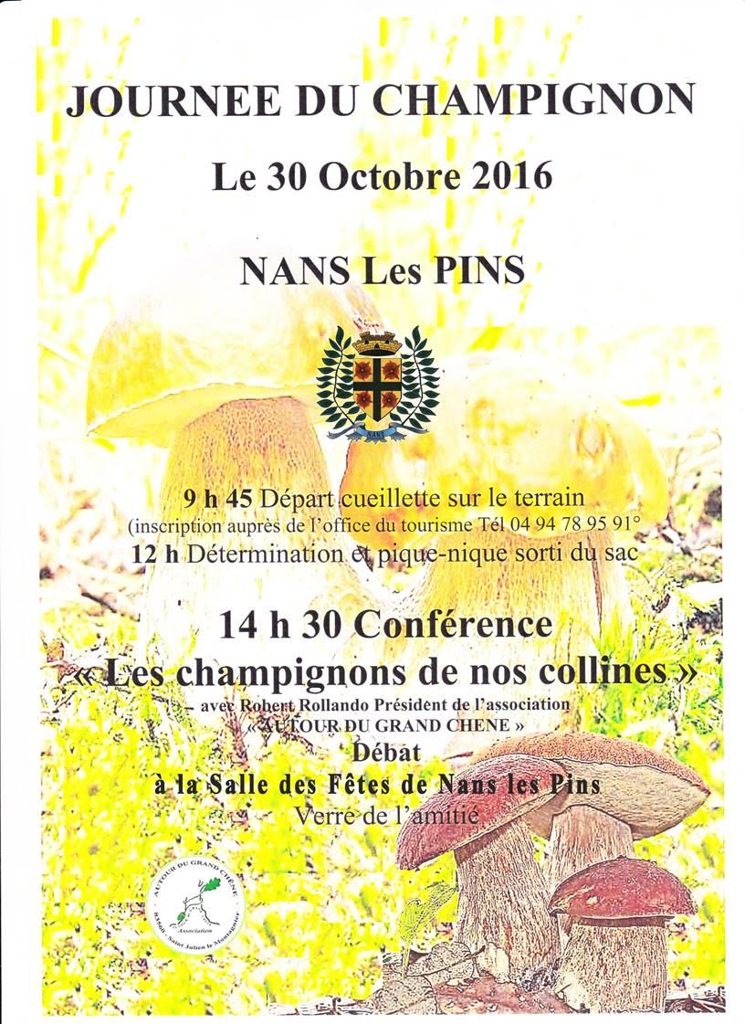 Journée du Champignon à Nans les Pins le 30 octobre 2016
